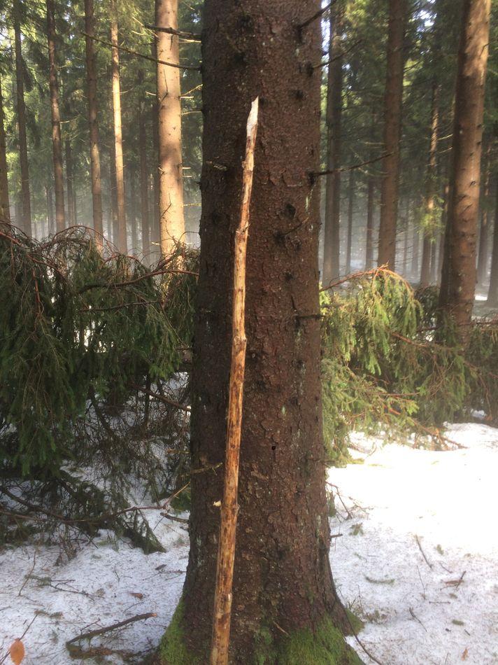 Krav Maga-Erfurt-Selbstverteidigung-Survival-Camp-Thüringen (39)